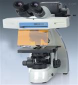 MF300系列高端型生物相衬荧光显微镜