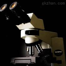 CX41 (双目) OLYMPUS 奥林巴斯生物显微镜
