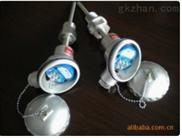 扬州海安TKWZPB-230一体化温度变送器