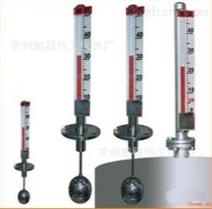 安徽天康UHZ-50/D防爆顶装式磁性浮球液位计