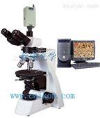 三目透射偏光显微镜:XP-550C