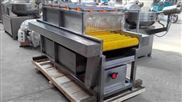 草莓喷淋清洗机 昊昌食品机诚信制造商