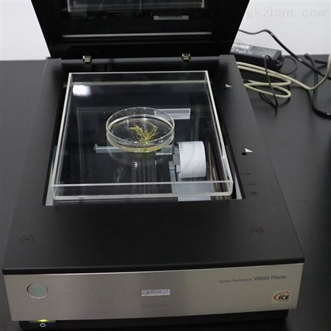 植物根系分析仪