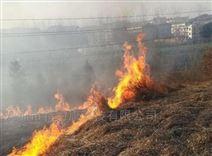 線路紅外熱成像山火預警系統電力銷售