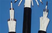 耐火型硅橡胶绝缘聚四氟护套屏蔽控制电缆