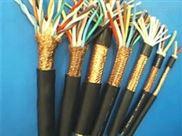 阻燃计算机屏蔽信号电缆ZR-DJYPVP
