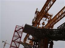 青海海東輪胎式龍門吊銷售租賃廠家造船