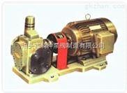 泊头-高温齿轮泵,防爆油泵,高压渣油泵