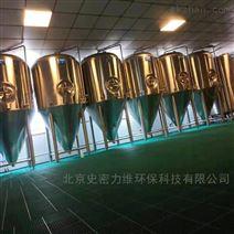 小型自釀啤酒屋釀酒設備廠家