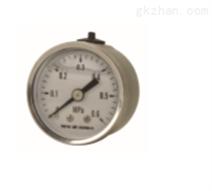 安徽天康YN-150ZT軸向帶邊耐震壓力表