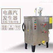 蒸汽发生器食品用商用电加热工业全自动小型