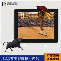 10.4/12.1/17/18.5寸工业平板电脑