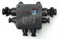 隔爆型低压电缆接线盒  BHD2-20  M185703
