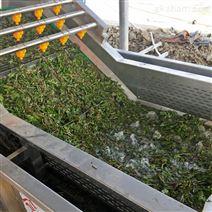 厂家定制水果气泡山竹清洗机设备