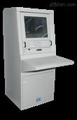应急照明控制器A-C-A100