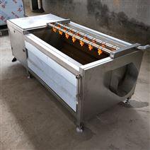 厂家定制不锈钢小葫芦毛辊清洗机