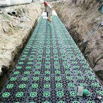 雨水收集系统成为市场焦点