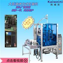 液体自动包装机 豆瓣酱灌装机