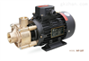 WF热水热油旋涡泵
