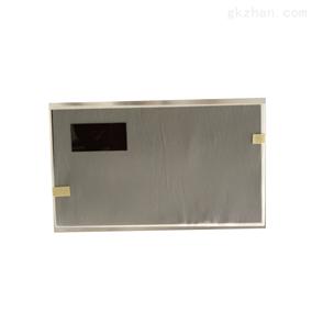 龙腾10.1寸液晶屏M101NWT2 R1