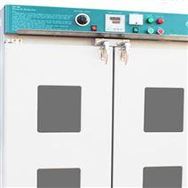 一氧化碳检测报警仪 型号:JX15-CD2001