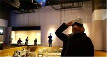 VR博物館,VR展廳數字化解決方案