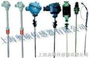 热电阻/电偶温度传感器