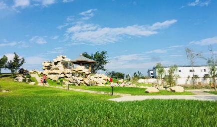 农业农村部部署夏粮生产后期灾害防范工作