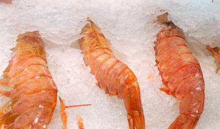 冰冻海鲜唱起主角 微冻保鲜技术留住其新鲜和风味