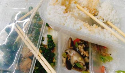 餐廚垃圾處理難?昆蟲生物能轉化新技術發表