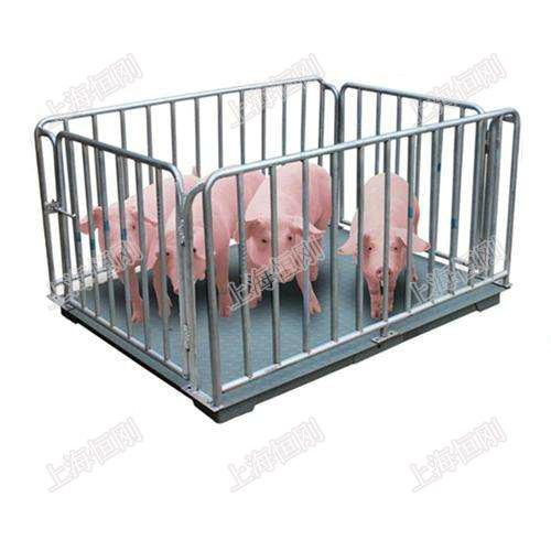 猪栏地磅秤