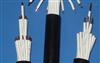 ZRC-KVVR-4*1.5阻燃型聚氯乙烯绝缘、护套控制软电缆