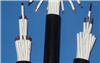 ZR-KVVP-12*1.5阻燃型钢带铠装控制电缆ZR-KVVP-12*1.5