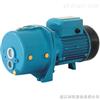 家用喷射泵/家用潜水泵/家用泵价格